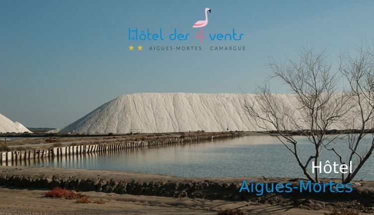 visiter nature aigues Mortes